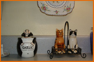 Garlic and salt shakers