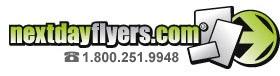 NextDayFlyers.com Web Logo